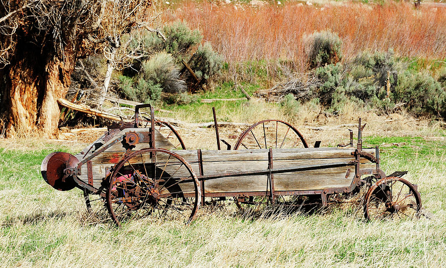Vintage Photograph - Hay Wagon At Butch Cassidys Home by Dennis Hammer