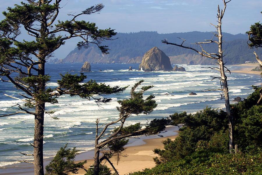 Ocean Photograph - Hayhstack Rock by Marty Koch