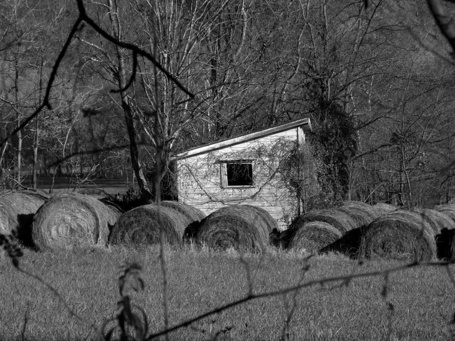Hay Photograph - Hayroll Shed 2 by Michael L Kimble