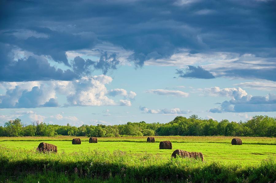 Haystacks In A Meadow Photograph by Evgeny Buzov
