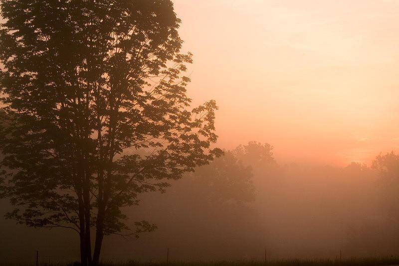 Sunrise Photograph - Hazy Sunrise by Amanda Kiplinger