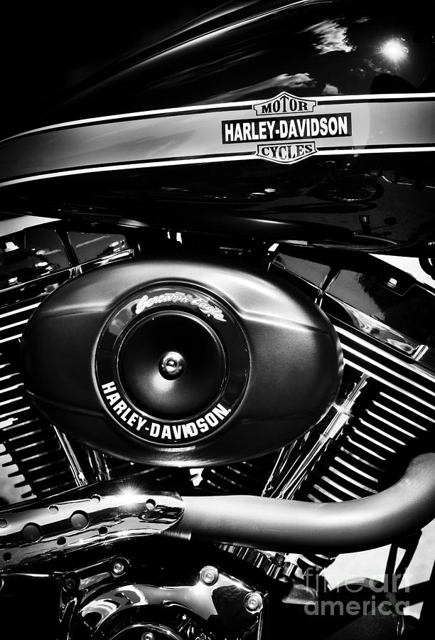 Harley Davidson Photograph - Hdmc by Tim Gainey