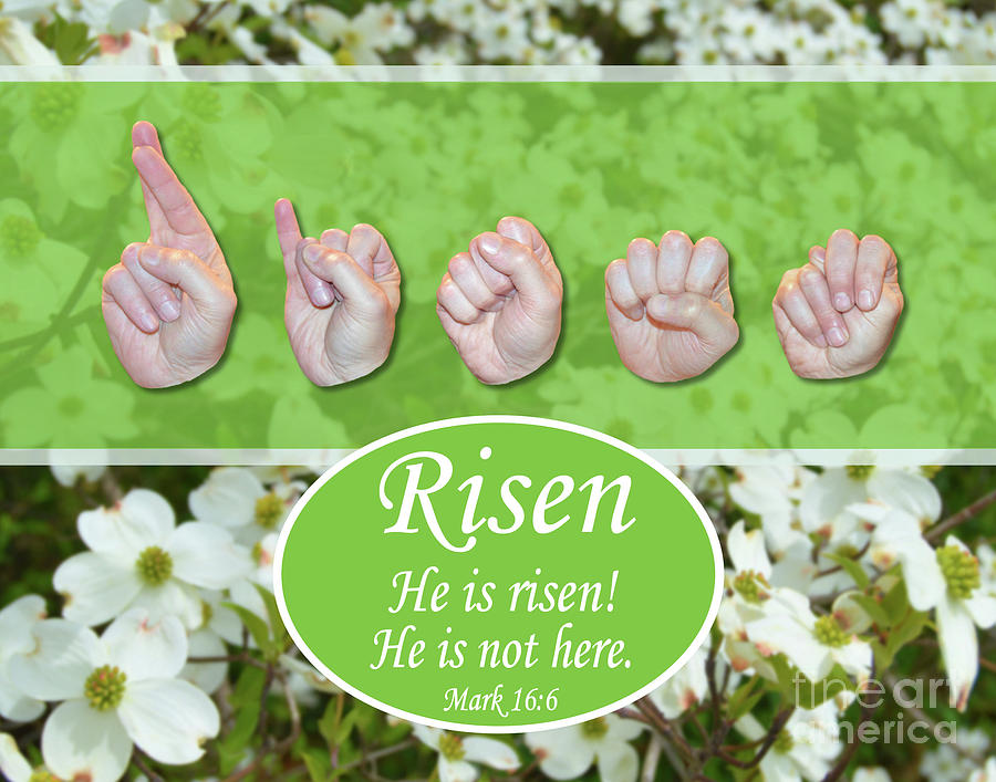 Christian Photograph - He Is Risen by Masters Hand Collection