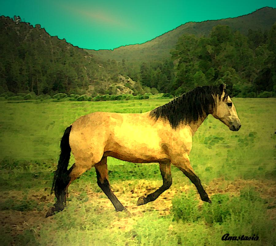 Andalusian Horse Photograph - He Paweth In The Valley And Rejoiceth In His Strength  by Anastasia Savage Ealy