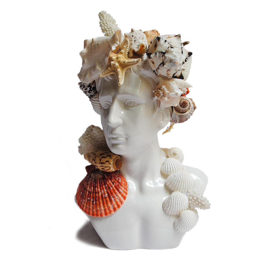 Male Bust Mixed Media - He Shell Bust by Denise H Cooperman
