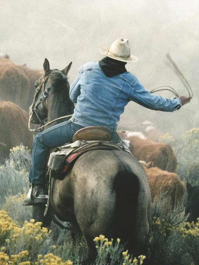 Head Em Up -  Move Em Out Painting by Lane Baxter