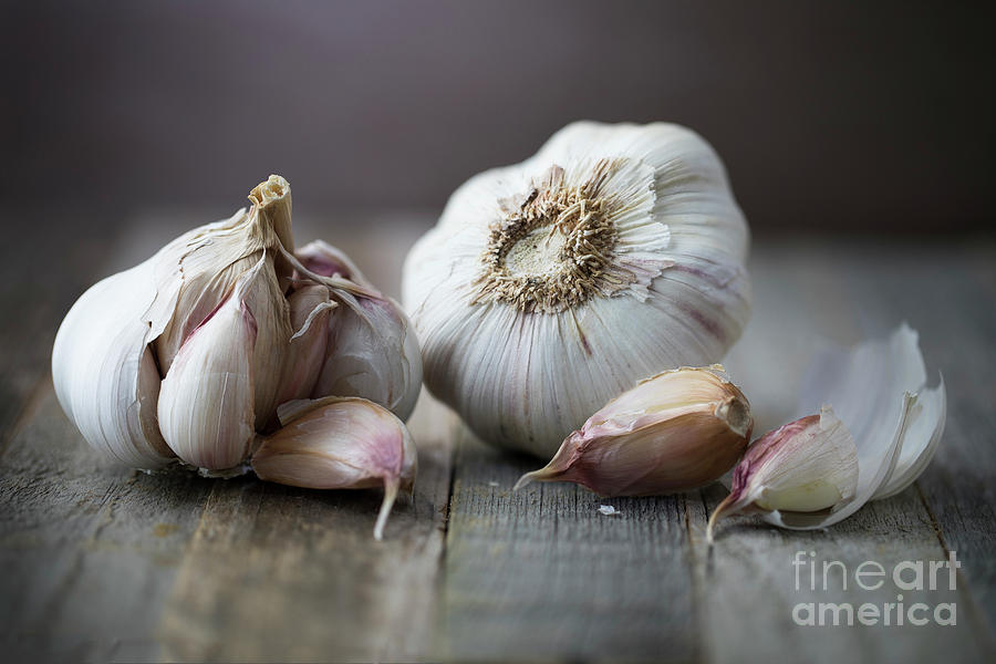 Head Of Garlic With Cloves Photograph