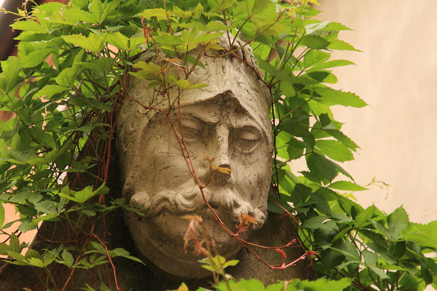 Venice Photograph - Head With Vines by Michael Henderson