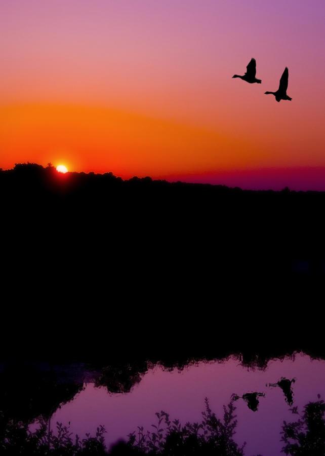 Sunset Photograph - Heading Home by Kenneth Krolikowski