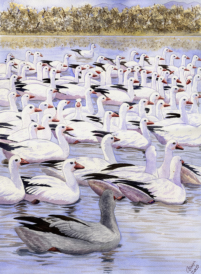 Geese Painting - Heading North by Catherine G McElroy