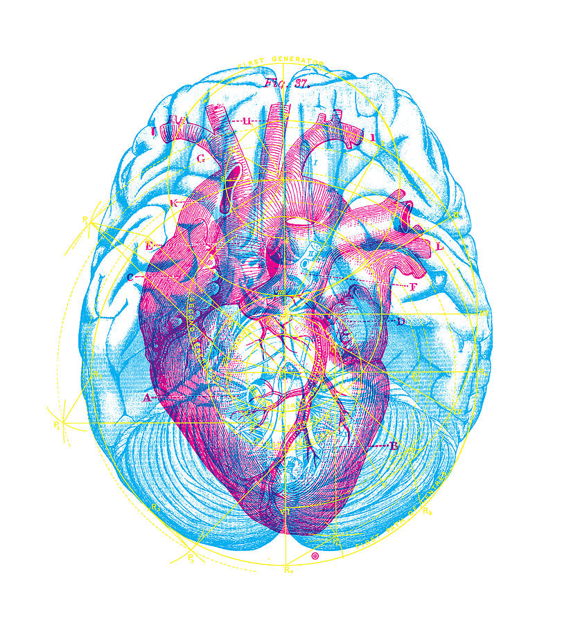 Graphic Digital Art - Heart Brain by Gary Grayson