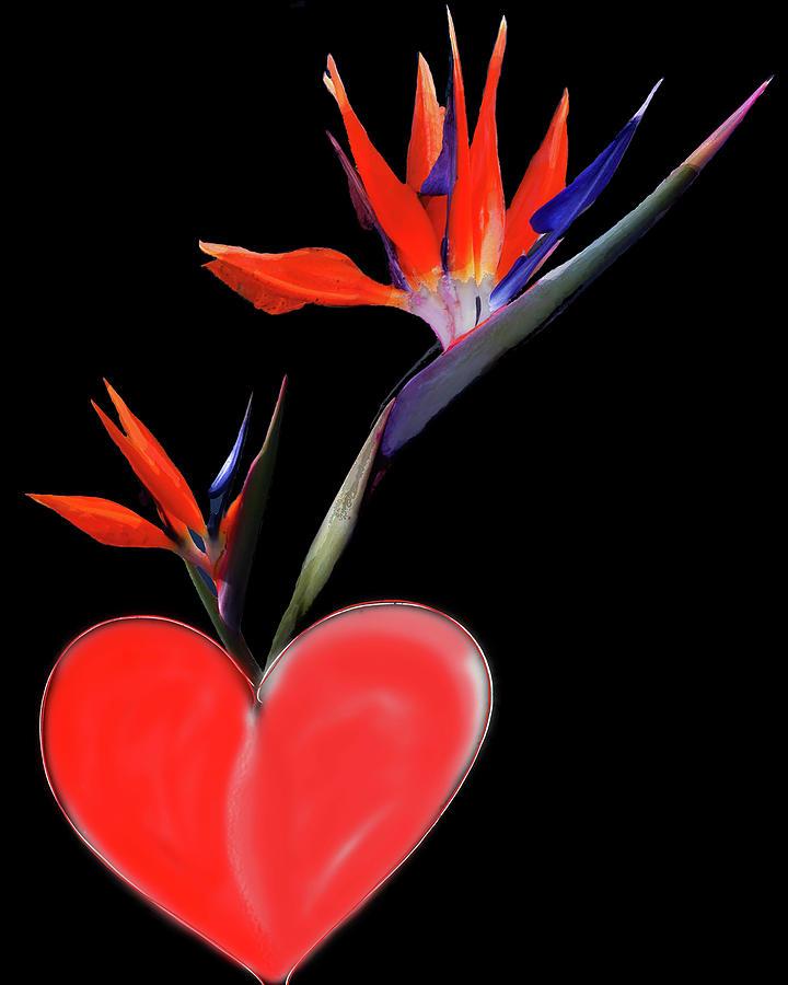 Heart  Of Paradise by Teresa Epps