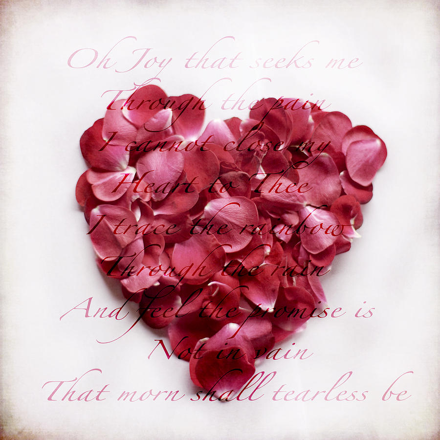 Rose Petal Photograph - Heart Of Roses by Linde Townsend