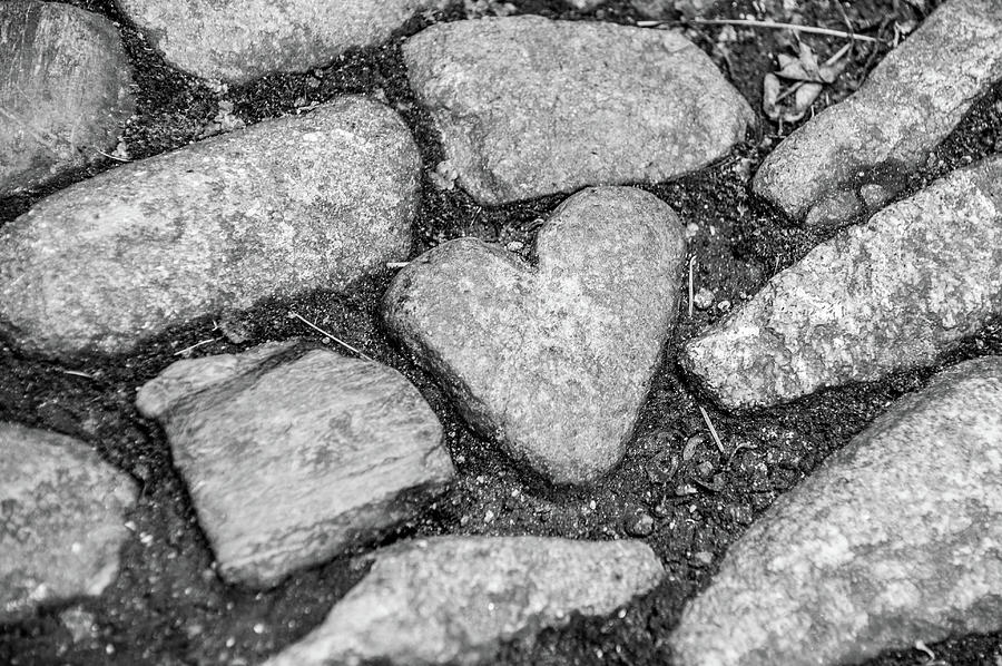 Heart Of Stone Photograph
