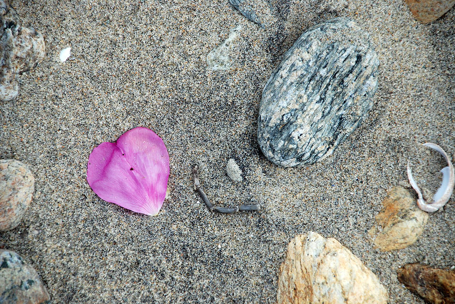 Beach Photograph - Hearts in Westport by Mark Wiley