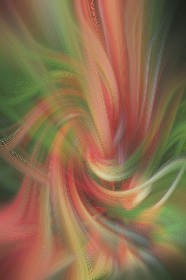 Abstract Photograph - Heat Stroke by Linda Phelps