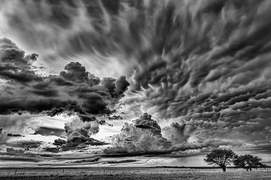 Heaven in Black and white by Pablo Rodriguez Merkel