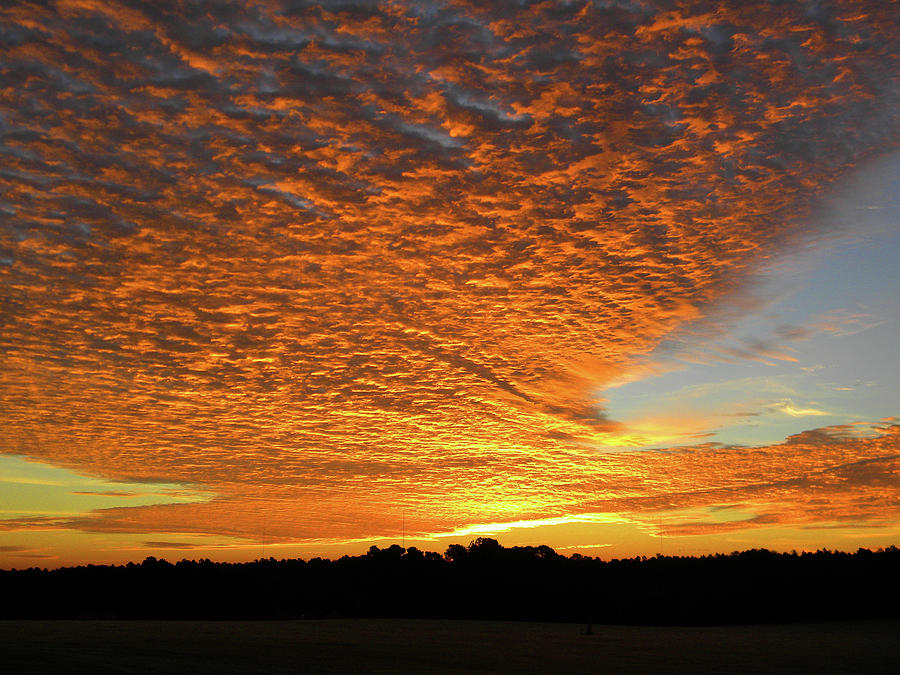 Sunrise Photograph - Golden Sunrise by Matthew Seufer