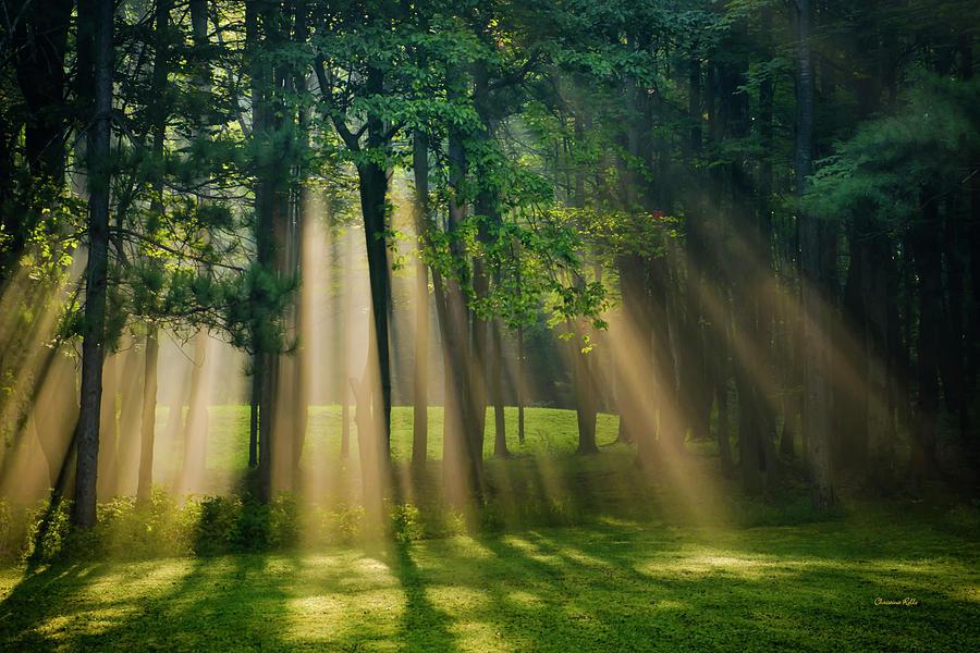 Scenic Photograph - Heavenly Light Sunrise by Christina Rollo