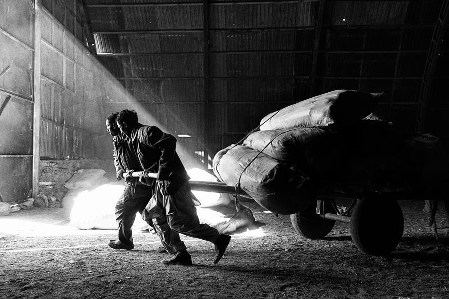 Afghan Photograph - Heavy Load by Damon Lynch