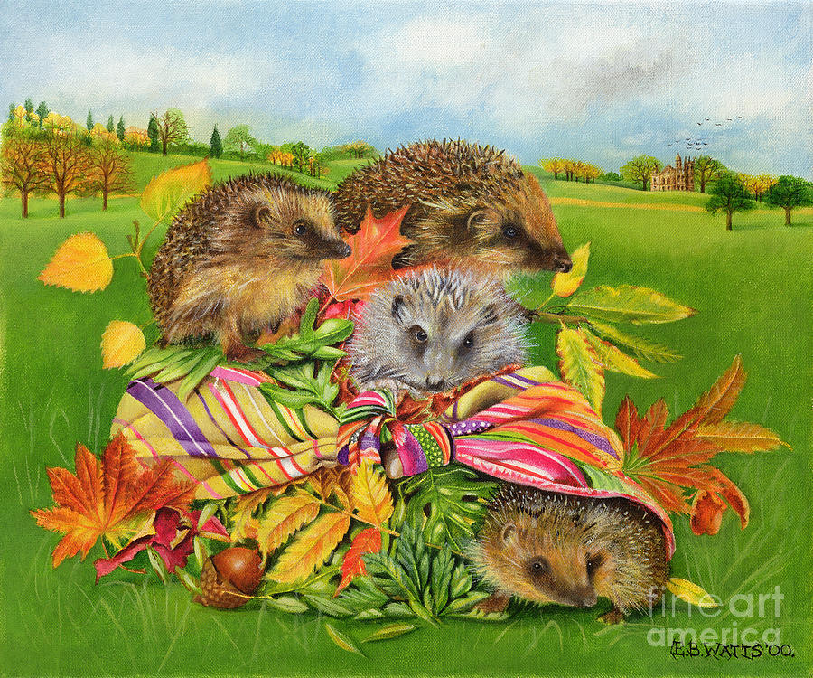 Hedgehog Painting - Hedgehogs Inside Scarf by EB Watts
