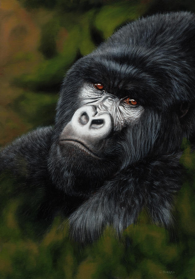 Heir Apparent Mountain Gorilla Painting By Jason Morgan