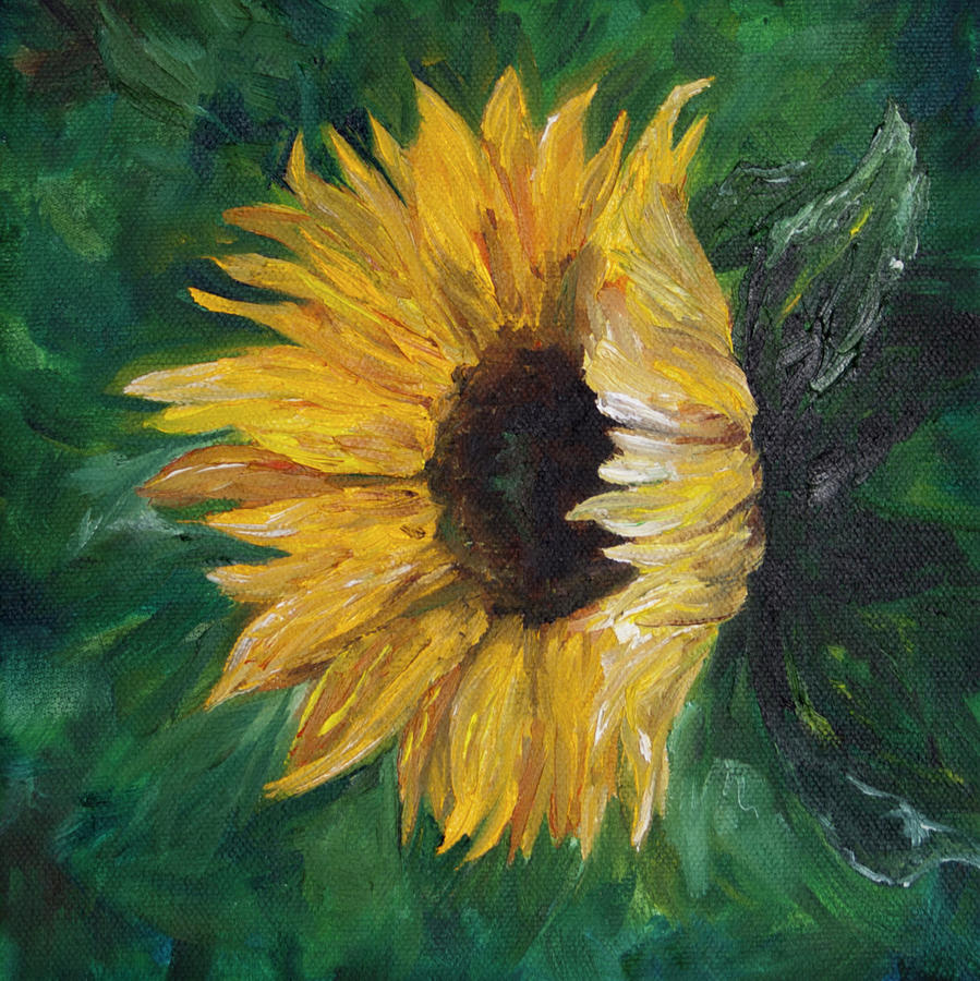 Helianthus by Melinda Cummings