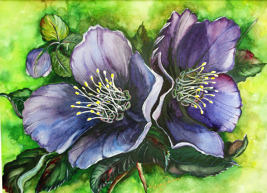 Helleborous Blue Lady Painting by Karin  Dawn Kelshall- Best