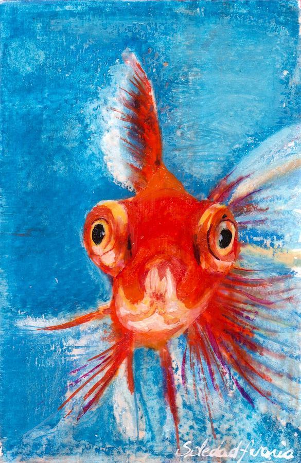 Hello Fish by Sole Avaria