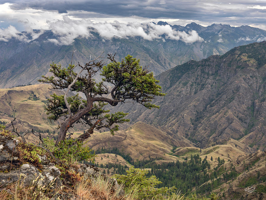 Altitude Photograph - Hells Canyon by Leland D Howard