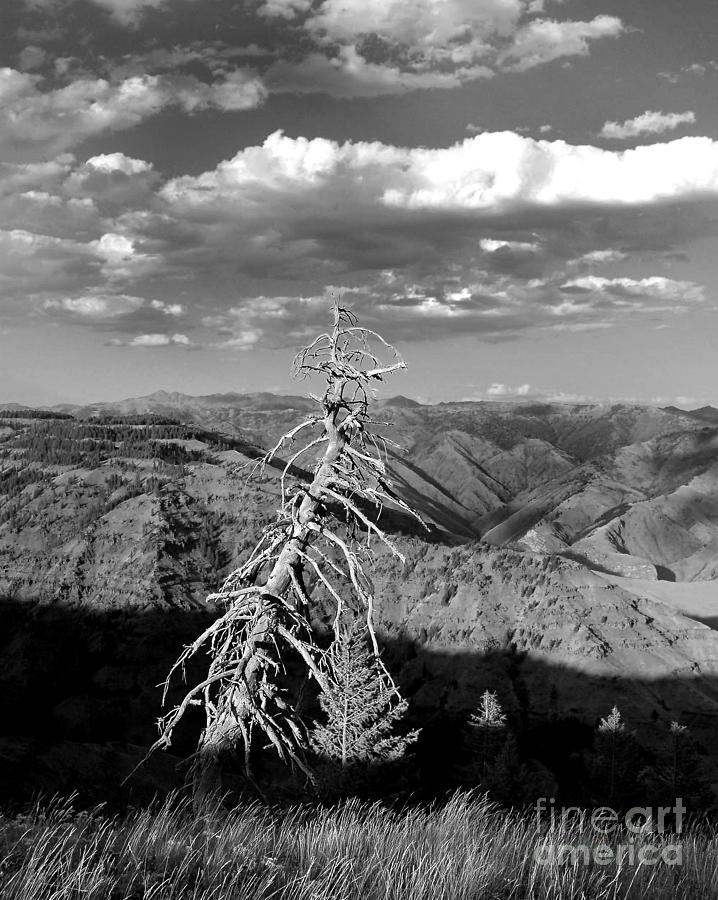Diane Berry Photograph - Hells Canyon National Park by Diane E Berry