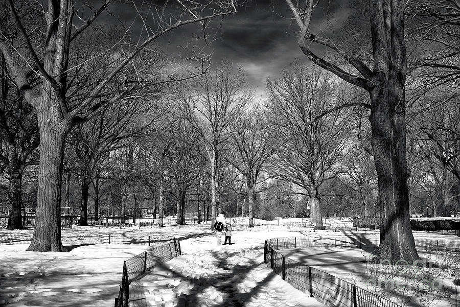 Father Photograph - Helping Hand In Central Park by John Rizzuto