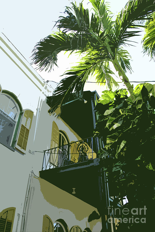 Key West Photograph - Hemingway Palm by Jost Houk