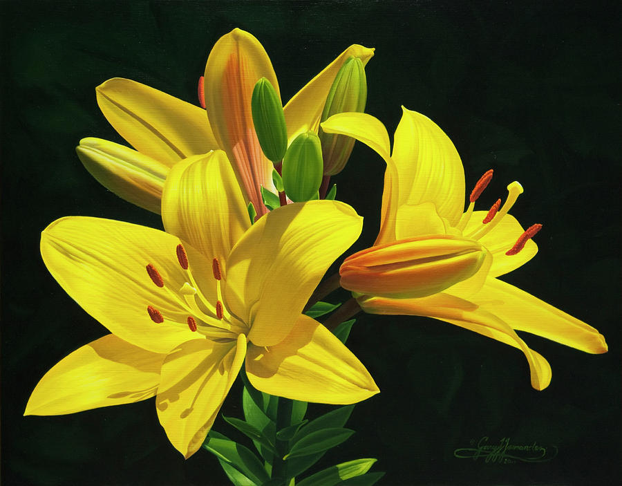 Yellow Lilies Painting - Her Majestys Lilies by Gary  Hernandez