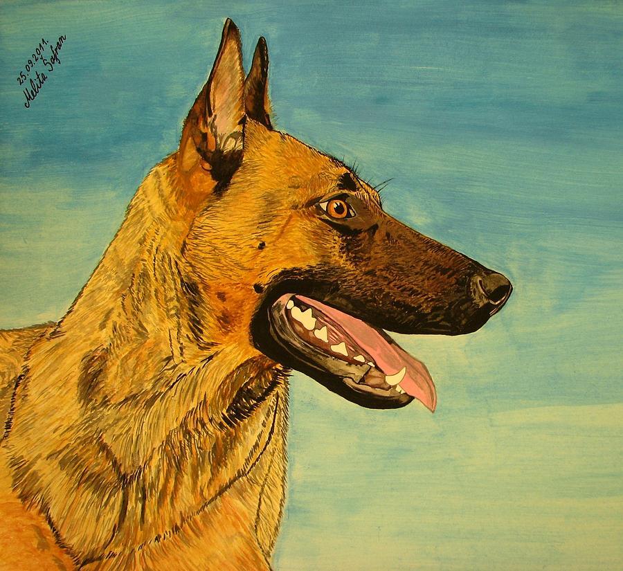 Dog Painting - Hera by Melita Safran