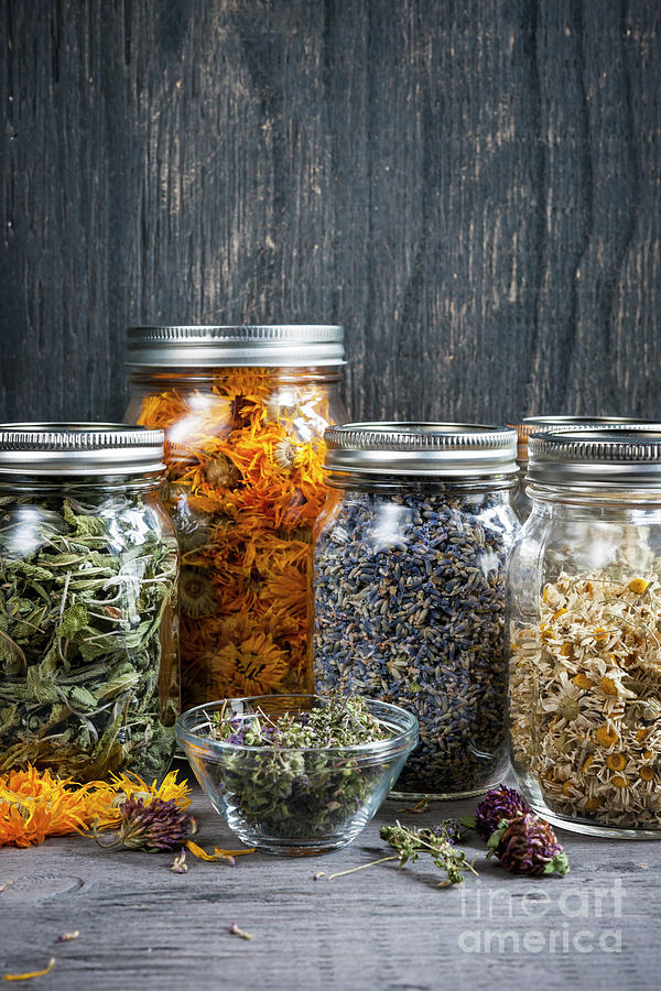 Herbs in jars by Elena Elisseeva