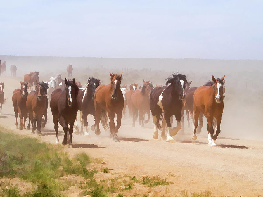 Herd of Horses during the Great American Horse Drive on a Dusty Road by Nadja Rider