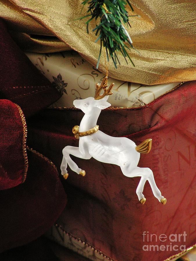 Holiday Photograph - Here Comes Prancer by Joy Bradley