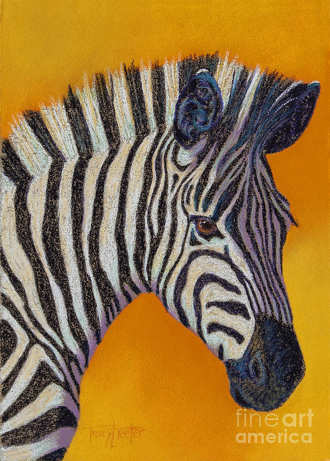 Zebra Pastel - Heres Lookin At You by Tracy L Teeter