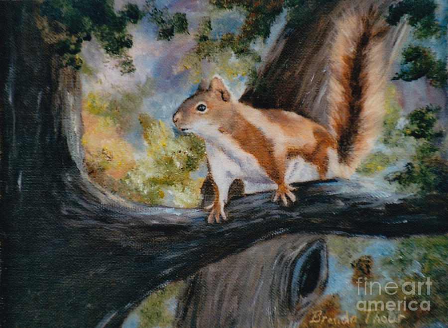 Squirrel Painting - Heres Looking At You by Brenda Thour
