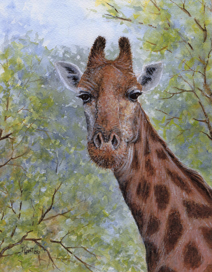 Giraffe Painting - Heres Looking At You by June Hunt