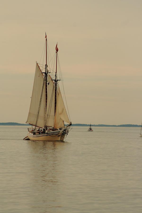 Seascape Photograph - Heritage Sailing In by Doug Mills