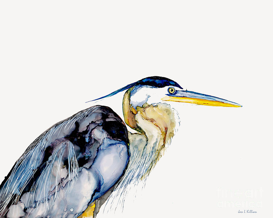 Heron Freeze by Jan Killian