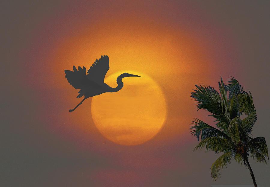 Sunset Digital Art - Heron in Sunset by Richard Nickson