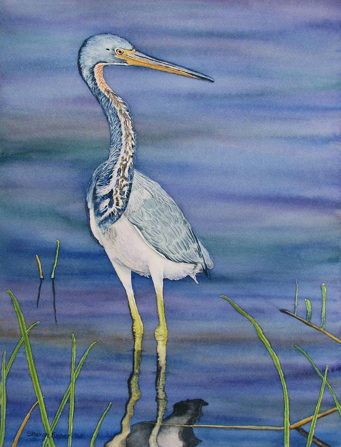 Heron Painting - Heron by Sharon Farber