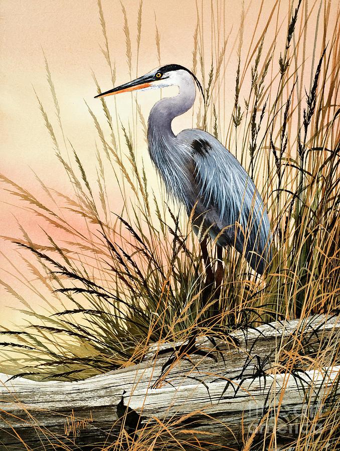 Heron Painting - Heron Sunset by James Williamson