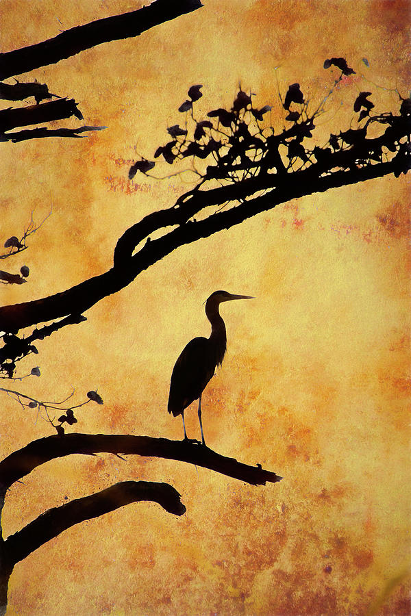 Heron Tapestry Photograph