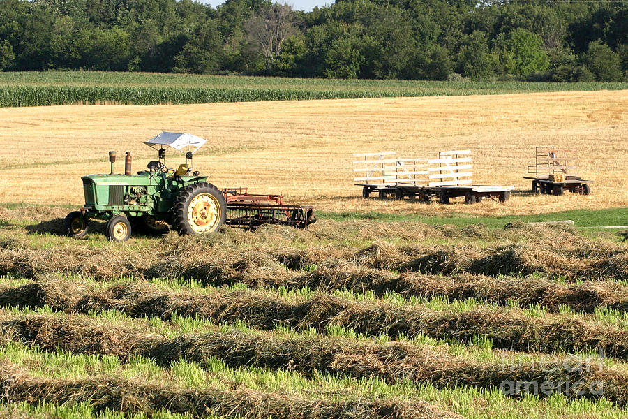 Agriculture Photograph - Hey Hay by Alan Look