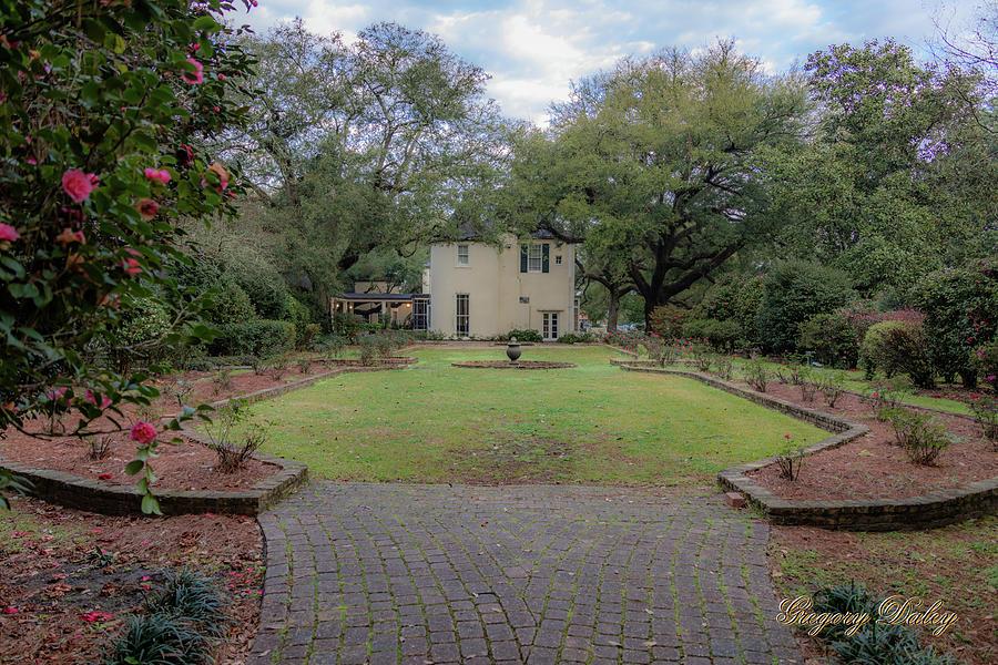 Heyman Garden 03 Photograph by Gregory Daley  MPSA