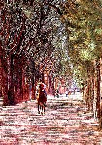 Horse Racing Digital Art - Hialeah by Gary Rogers